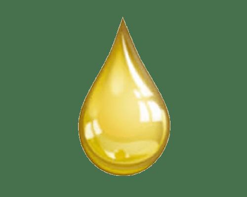 olfactif d or
